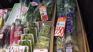 nishiki130304yamakyup.JPG